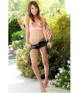 Sextoys, sexshop, loveshop, lingerie sexy : Nippies Cache Seins : Nippies cache tétons drapeau américain