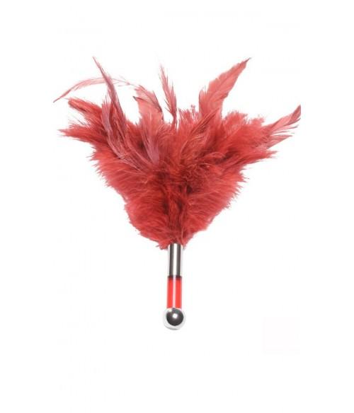 Sextoys, sexshop, loveshop, lingerie sexy : Caresses et Masques : Plumeau Pour Caresses Rouge