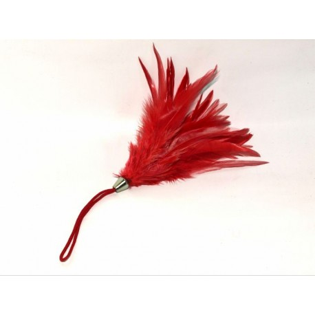 Sextoys, sexshop, loveshop, lingerie sexy : Caresses et Masques : Bracelet Plume Rouge Pour Caresses