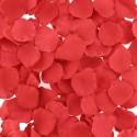 """Sextoys, sexshop, loveshop, lingerie sexy : Jeux Coquins : Boite 100 Pétales de Roses \\""""Bed of Roses\\"""""""